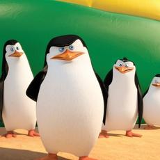 "Кадр из фильма ""Пингвины Мадагаскара"" - 5"