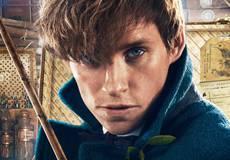 В «Фантастических зверях 2» будет много отсылок к «Гарри Поттеру»