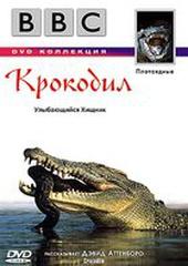 BBC: Крокодил