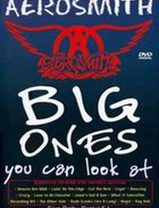 Aerosmith: Такого Вы еще не видели (видео)