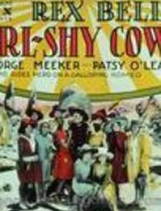 Girl-Shy Cowboy