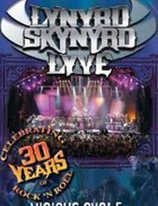 Lynyrd Skynyrd Lyve: The Vicious Cycle Tour (видео)