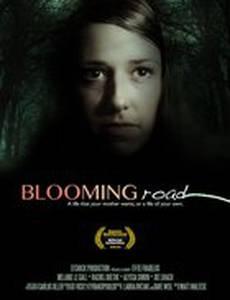 Blooming Road