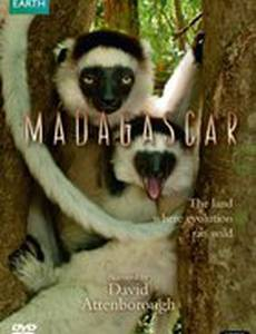 BBC: Мадагаскар (мини-сериал)