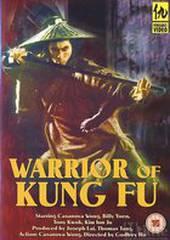 Воины кунг-фу