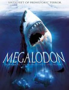 Мегалодон (видео)