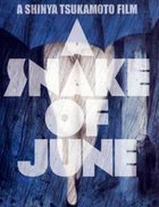 Июньский змей