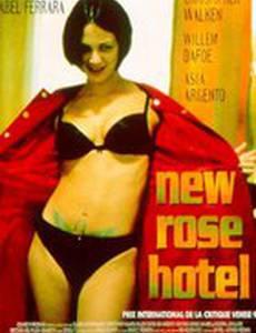 Отель Новая Роза