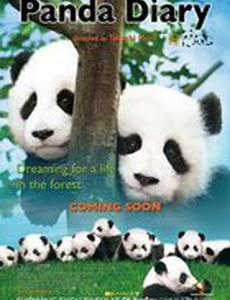Дневник панды