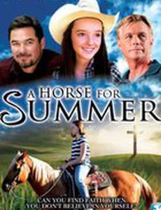 Лошадь на лето
