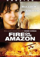 Амазонка в огне (видео)