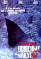 Бешеные акулы (видео)