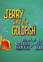 Джерри и золотая рыбка