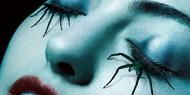 «Американская история ужасов» продлена на 7 сезон