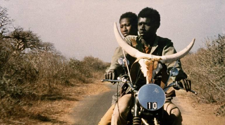 Фильмы про Африку