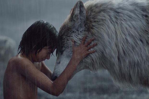 кадр из фильма Книга джунглей