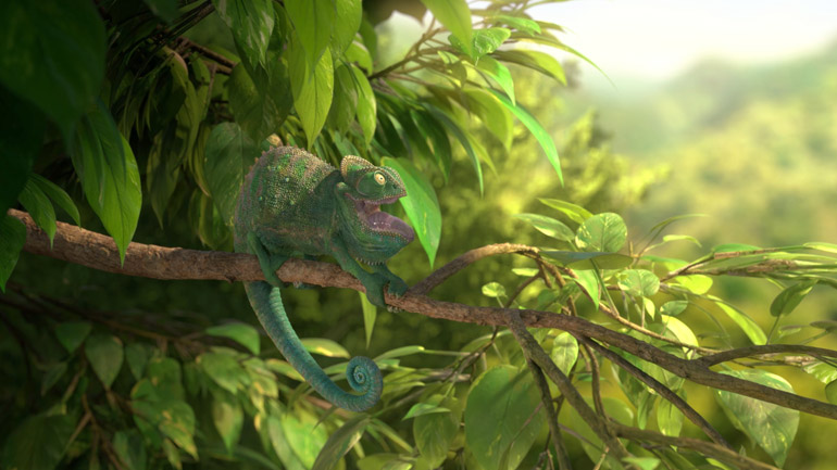 "кадр из фильма ""Our Wonderful Nature – The Common Chameleon"""
